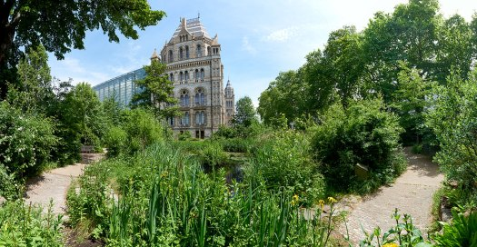 wildlife-garden-and-museum-building-panorama-full-width
