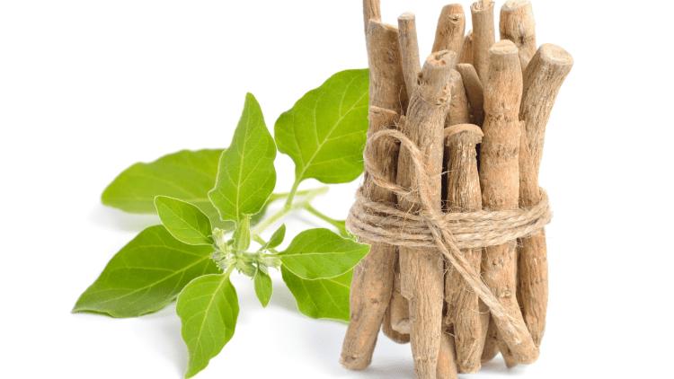 Ashwagandha health benefits and home remedies