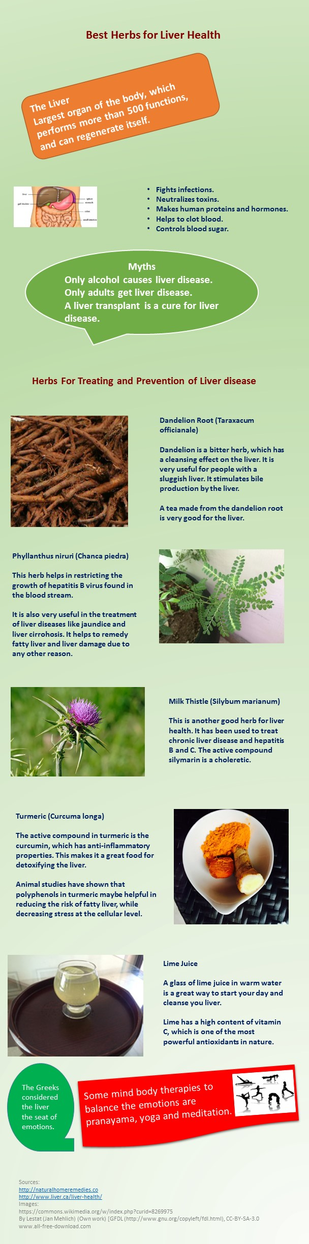 Best herbs for liver health