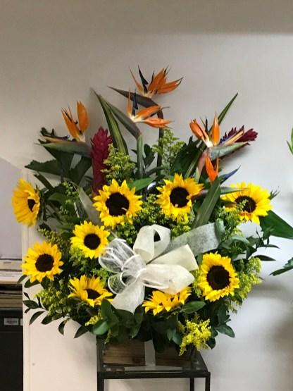 FNR006 $220.00 Sun Flowers and Paradise Bird
