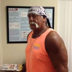 Hulk Hogan uses the Magnesphere 1