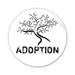 Adoption Series