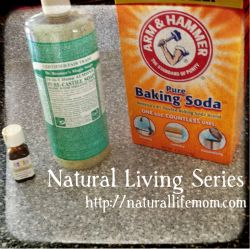 Natural Living Series at A Little Bit of All of It