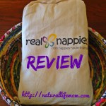 Real Nappies Prefolds