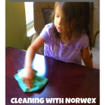 Avoiding Chemicals by Cleaning with Water and a Cloth