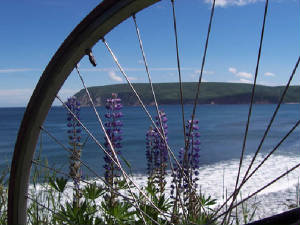 CyclingCabotTrail10