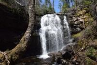 MacNaughton Brook Falls 1