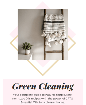 green cleaning photo
