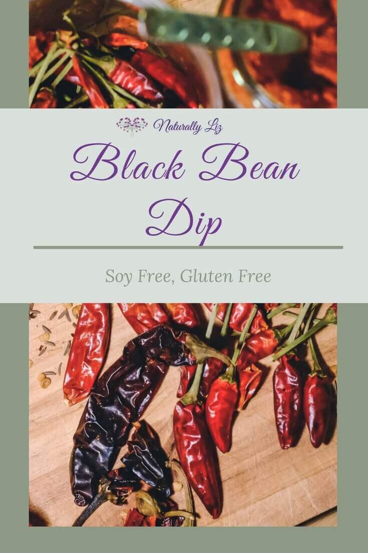Black Bean Dip soy free, easy and fabulous~Naturallyliz.com