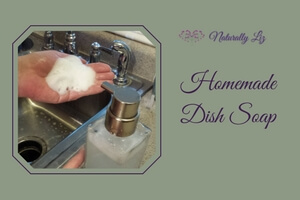 Foaming Homemade Dish Soap soy free