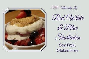 Red, White, and Blue Gluten Free Shortcake (Soy Free, Gluten Free)