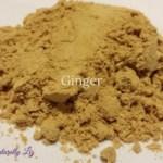 Ginger-Anti-Inflammatory Fall Spice Blend