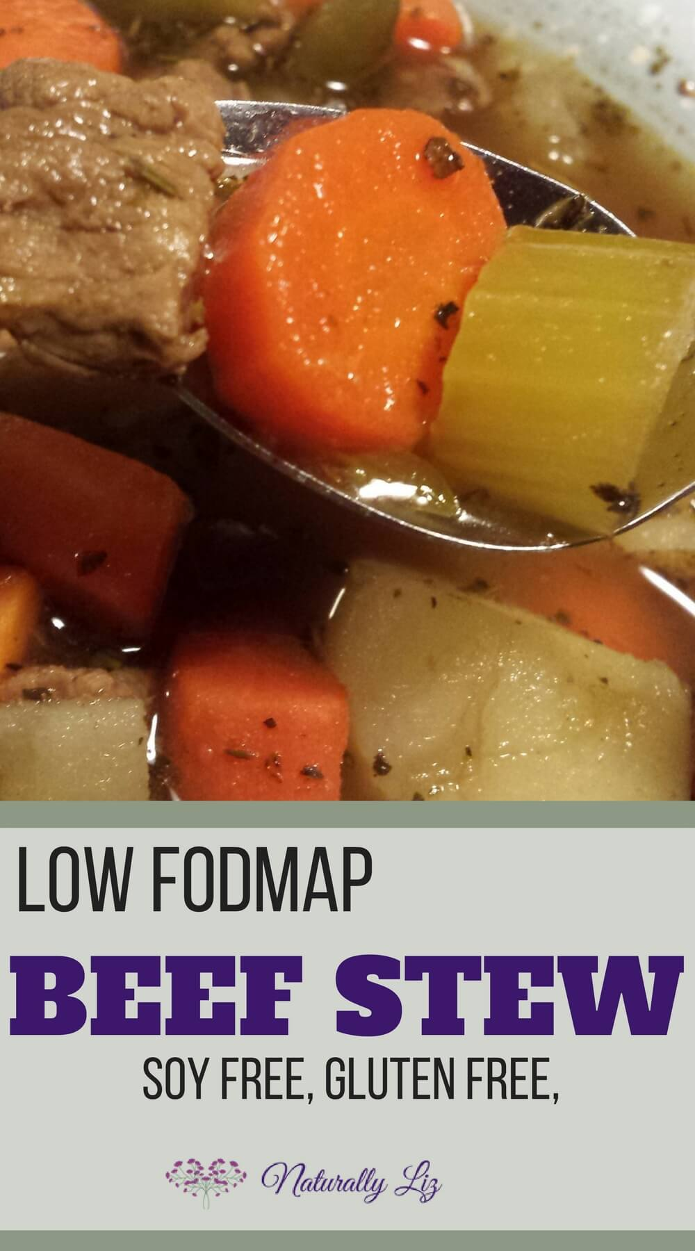 Low FODMAP Beef Stew~Gluten, Soy and Dairy Free with Paleo Option