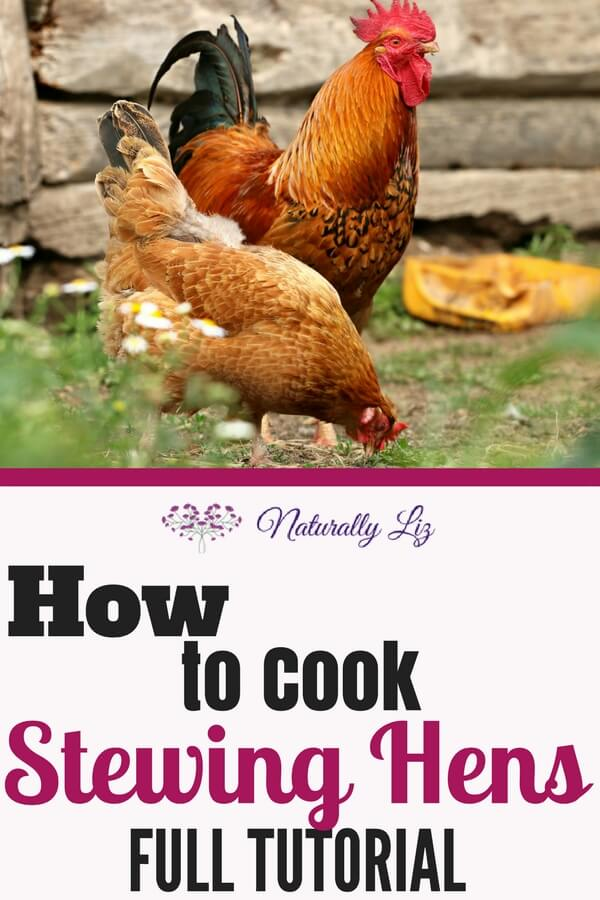 Everything you need to know to cook a stewing hen~Naturallyliz.com