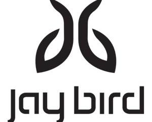 Jaybird, Giveaway, Headphones, Bluebud, Bluetooth, fitness, active, running, sports, outdoors, audio, editor's choice, best headphones, top headphones, enter to win