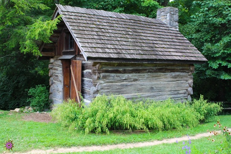 Log Cabin | Tennessee Agricultural Museum - Summer Saturdays | Naturally Stellar