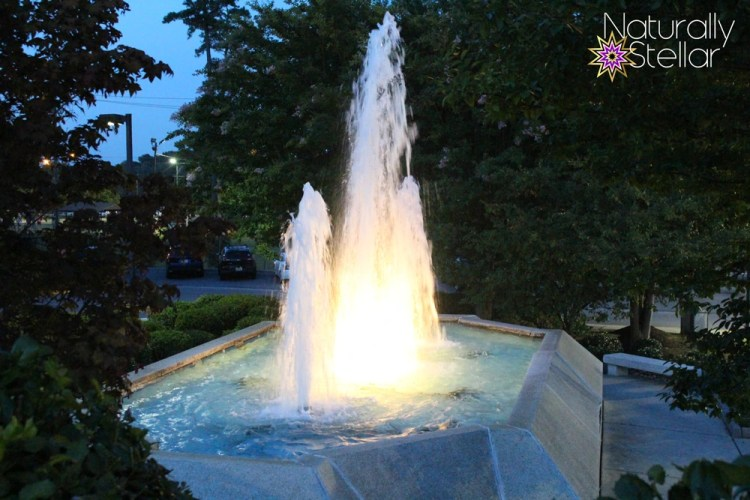 Riverview Hospital Fountain - Gadsden, AL | Naturally Stellar