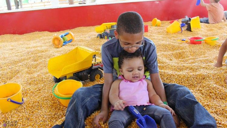 Lucky Ladd Farms Corn Pit | Naturally Stellar