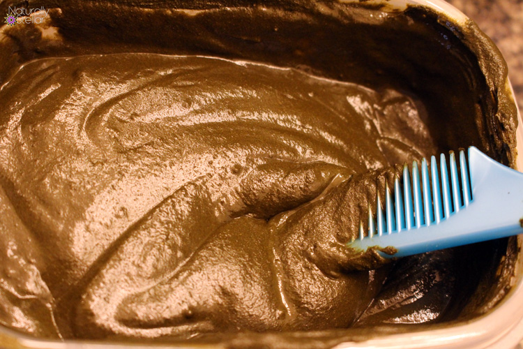 Conditioning Henna Gloss Treatment For Fine Thin Hair