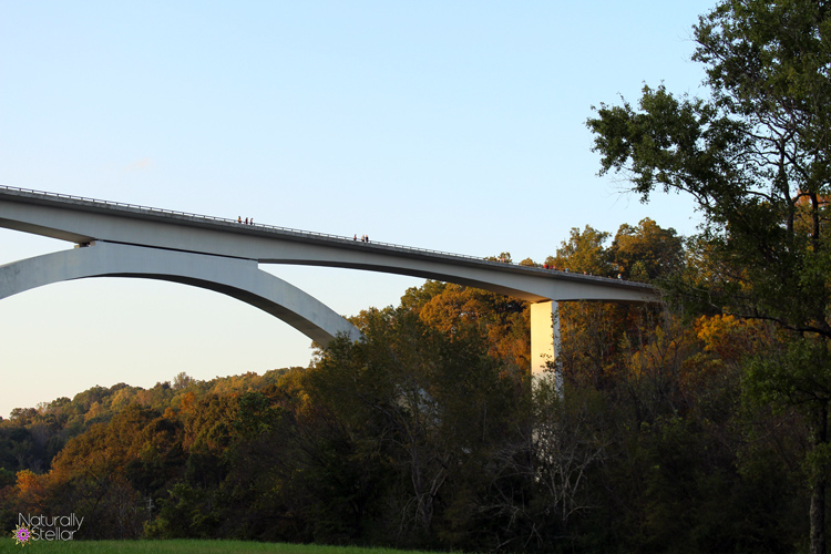 Natchez Trace Double Arch Bridge - Williamson County, TN | Naturally Stellar