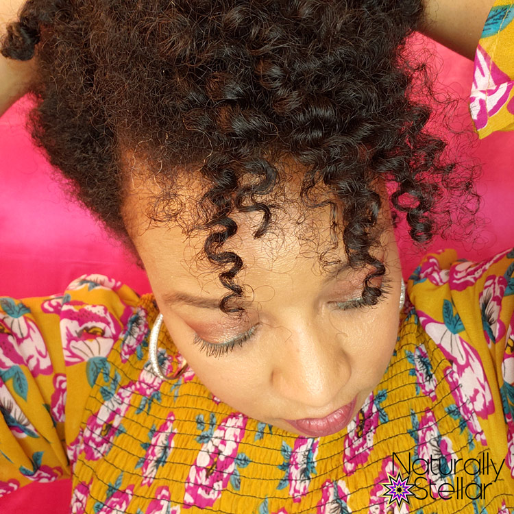 Twist Out Updo Fine Natural Hair | Naturally Stellar