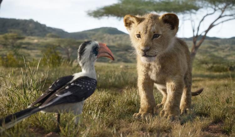 Disney's The Lion King Movie - Simba Cub | Naturally Stellar