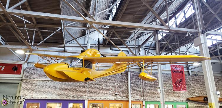 Yellow Avid Catalina Aircraft   Naturally Stellar
