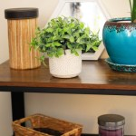 Entry way table decor for small space apartment. Naturally Stellar