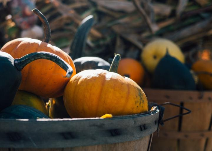 Pumpkins in a basket represent nutritious fall fruits and vegetables.