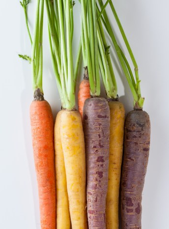 Rainbow carrots bundled together and isolated on a white background. They are highly nutritious and one reason why now is the time to indulge in spring fruits and vegetables.