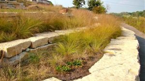 prairie-dropseed-river-park-wall