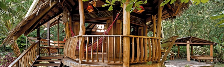 natural_mystic_travel_treehouselodgeexterior_long