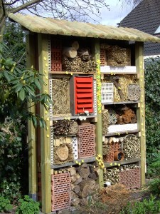 Insektenhotel - ein Beitrag für die Natur