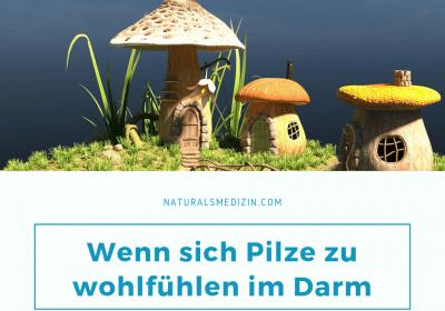 Darmpilze - Symptome und Therapie