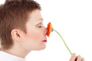 Die Nase übernimmt zentrale Aufgaben für den menschlichen Organismus