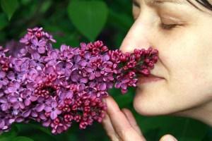 Abhängig vom Nasenspray - Wege aus der Sucht