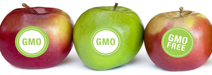 GMO-apple-label-735-260