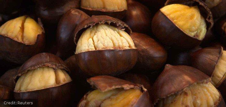 chestnuts-reuters_735_350_credit