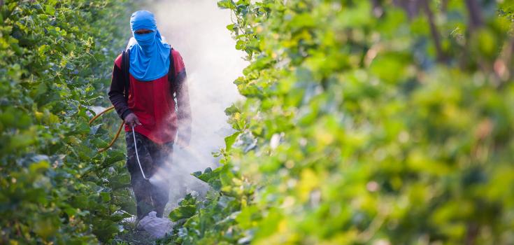 pesticides_spraying