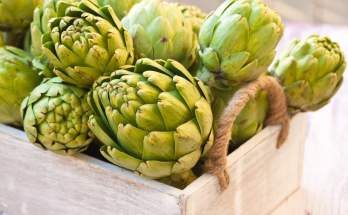 Artichokes have so many health benefits