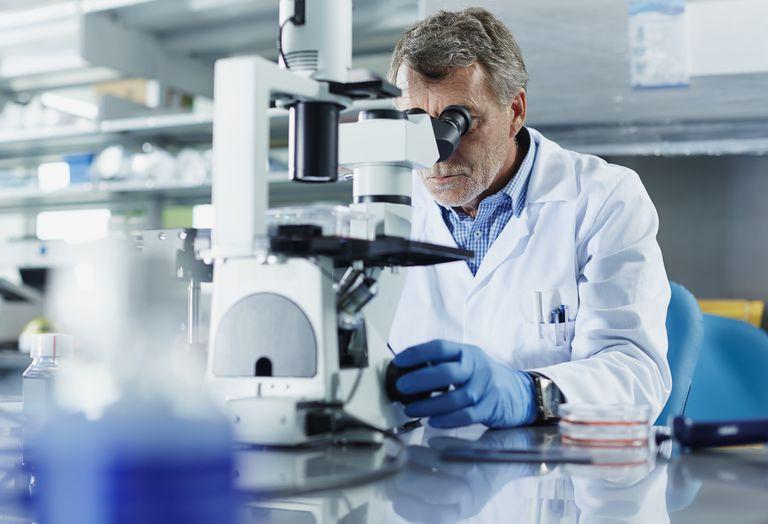 Testogen clinical studies