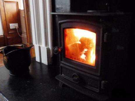 woodburnstove