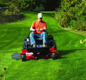 Lawn Care & Mowing Services