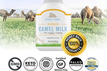 Camel Milk Review: Best Milk Ever?