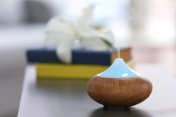 Advantages of Having a Humidifier in Your Home