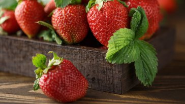 Fresh Juicy Strawberries With Leaves.
