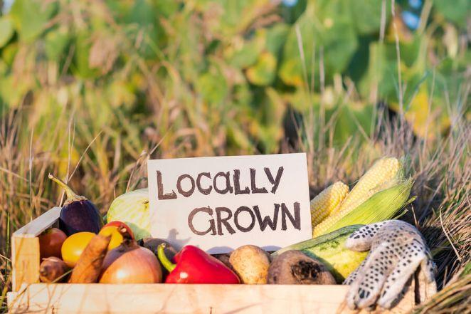 Locally Grown Produce No GMO Food