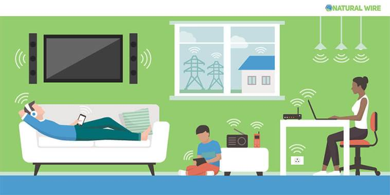 Electromagnetic Fields In The Home And Sources: People Living In
