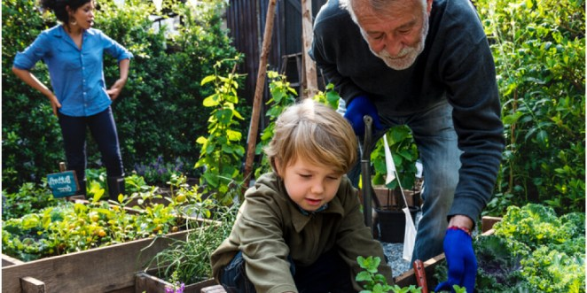 10 Surprising Health Benefits of Gardening