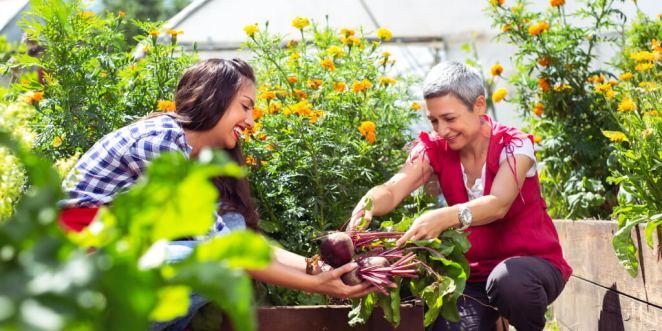 Organic Farming_5 support
